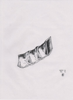 sogno04par04 - china su carta - A4