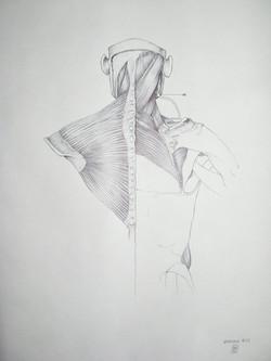 Armatomia03