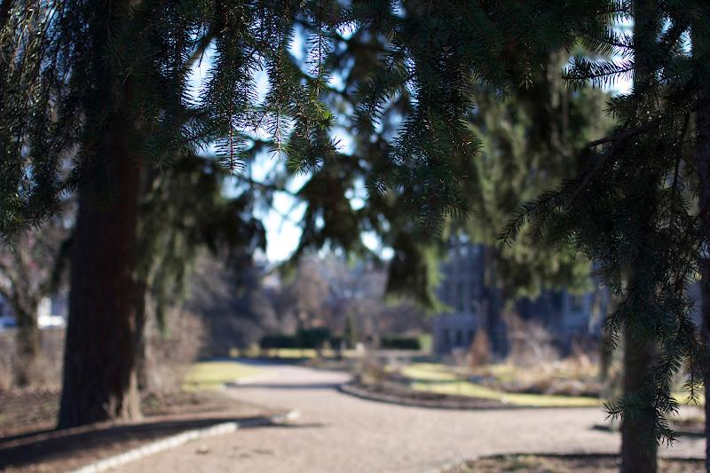 Vår_i_Botanisk_have.jpg
