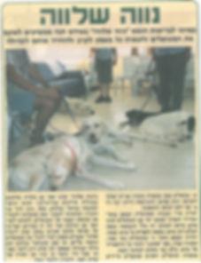 מאמר | פעילות הכלבים בנווה שלווה