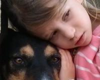 טיפול בילדים בעזרת כלבים