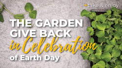 give-back-garden