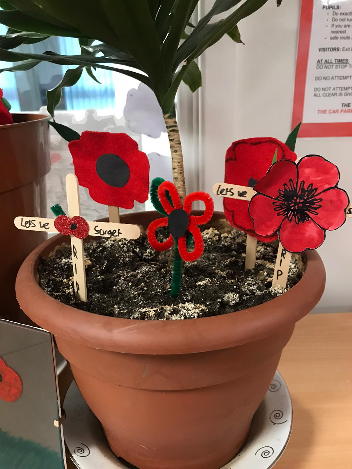 Poppy Pot 1