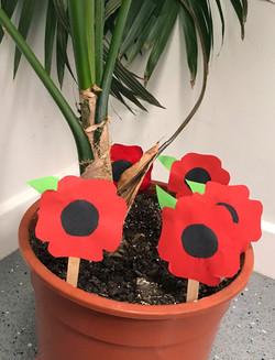 Poppy Pot 2