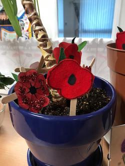 Poppy Pot 3