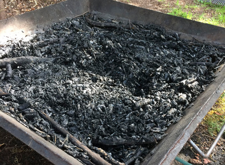 Biochar Session with Brian Smallshaw at the October 26  Workshop!