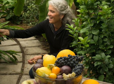 Thinking of taking the March workshop? We'll focus on what it takes to grow Fruiting Citrus and