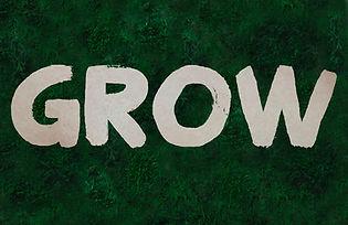 Grow portada.jpg