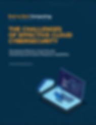 whitepaper-cybersecurity-image.png