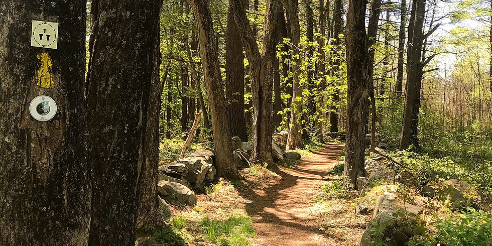 Short Is The New Long: New England's Long Distance Hiking Paths