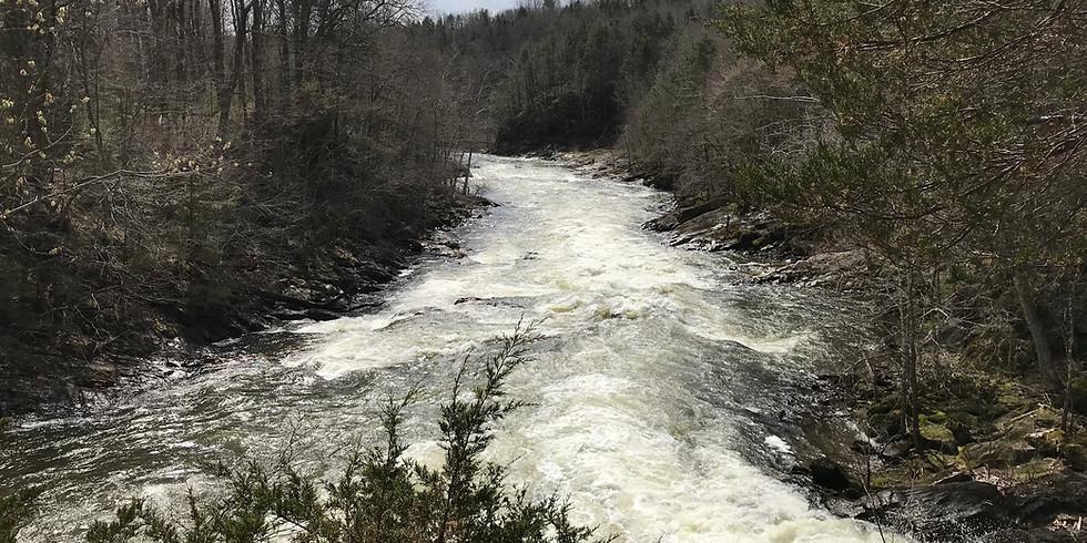 Backpacking Fundamentals & Skills On The Appalachian Trail