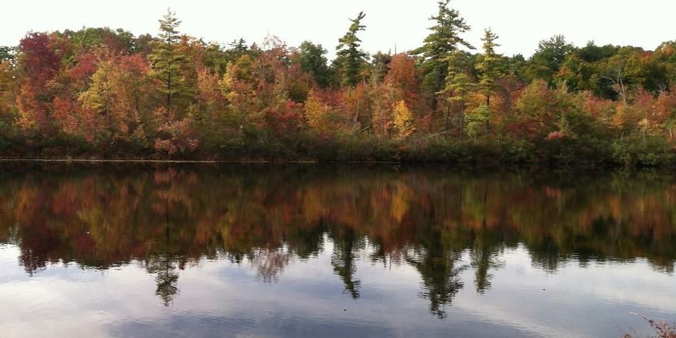 NET Fall Hike Series: Penwood State Park Hike