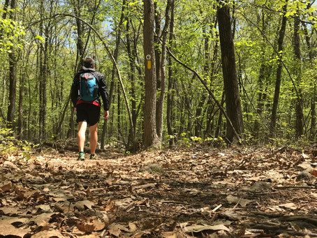 Bay Circuit Trail: Hiking The 230 Mile Emerald Necklace of Massachusetts (Section 6)