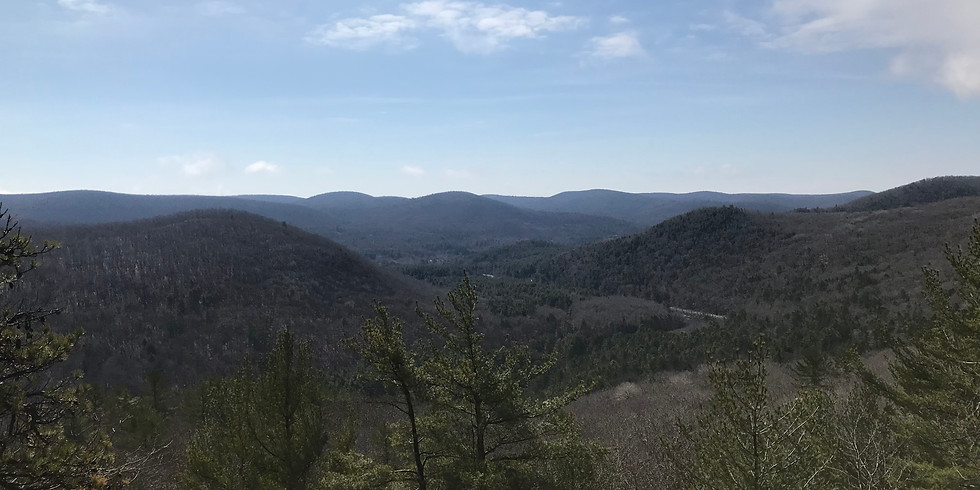 Blue Blaze Trails Fall Hike Series: Pine Knob Loop Trail