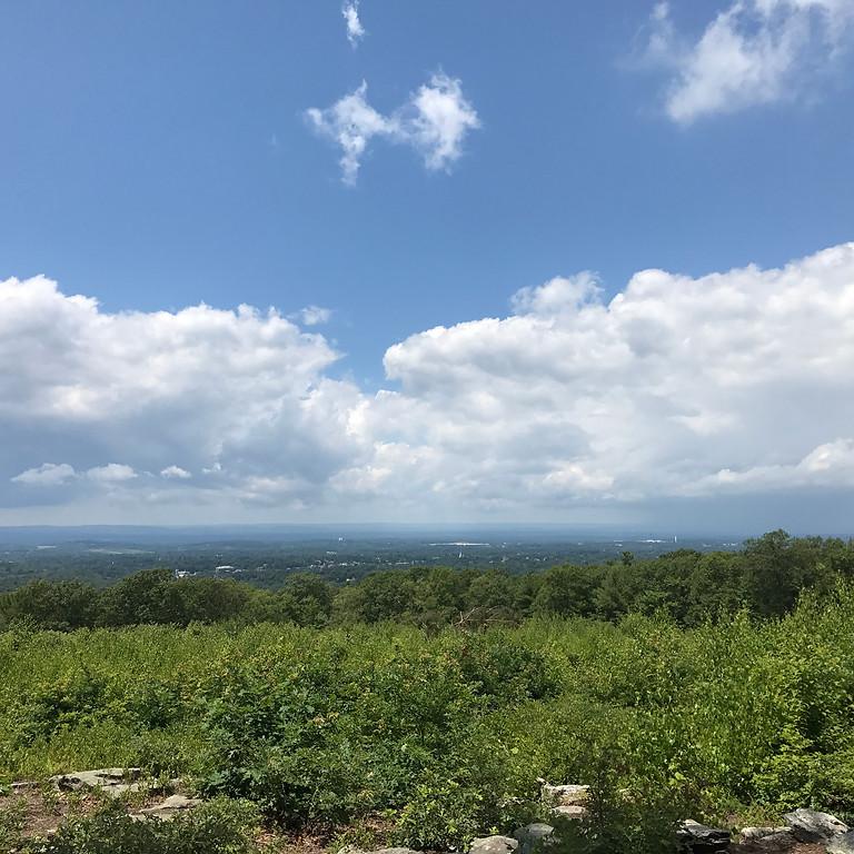 Blue Blaze Trails Fall Hike Series: Shenipsit Trail