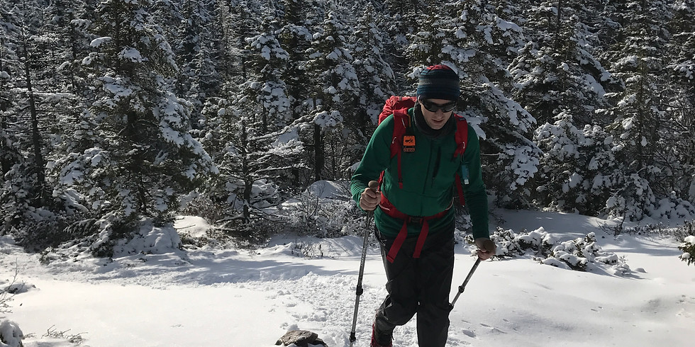 Winter Wander: Guided Hike & Seminar
