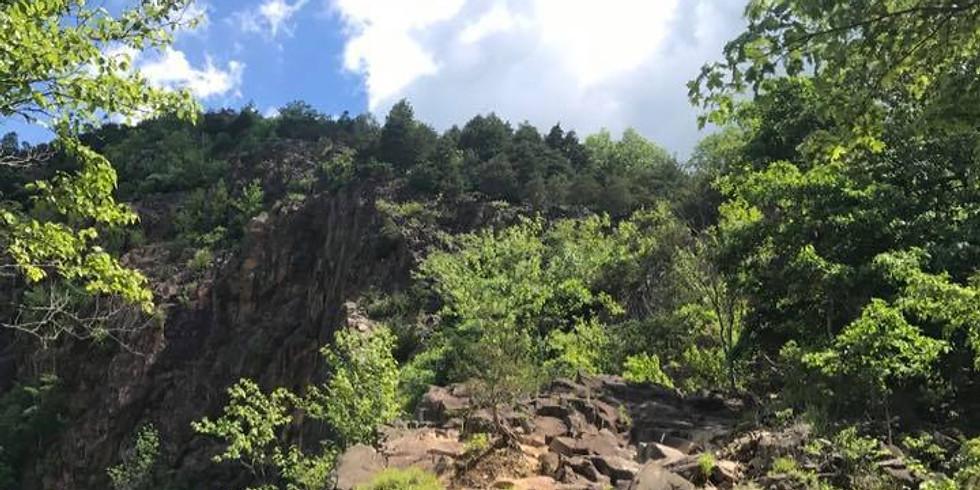 Blue Blaze Trails Fall Hike Series: Quinnipiac Trail