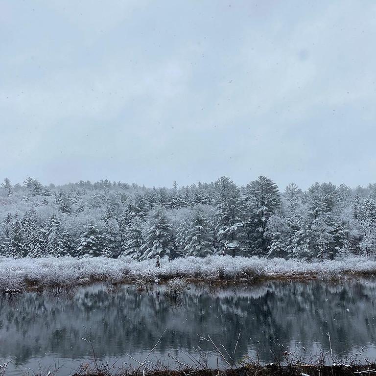 Winter Festival 2021 (Virtual)