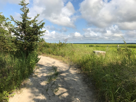 Backpacking On Cape Cod