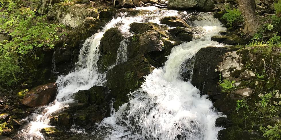 Blue Blaze Trails Fall Hike Series: Mohawk Trail