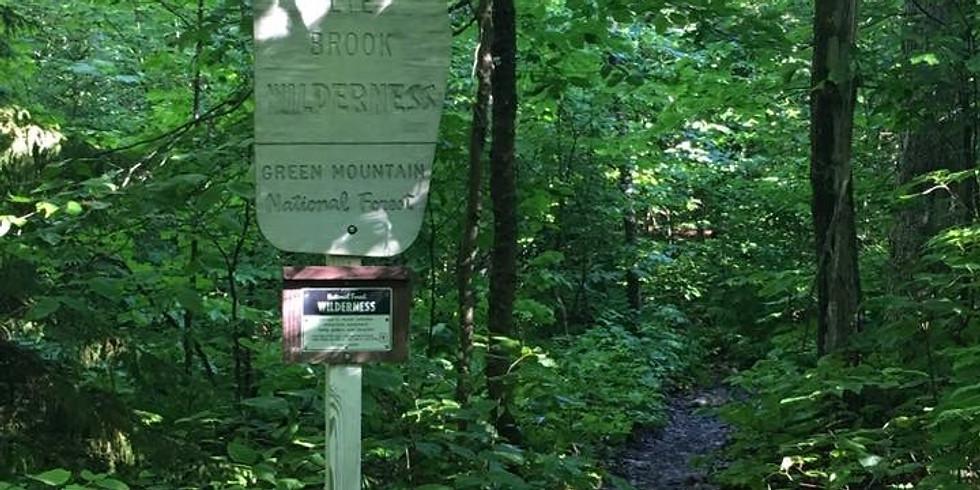 Backpacking Fundamentals & Skills In Lye Brook Wilderness