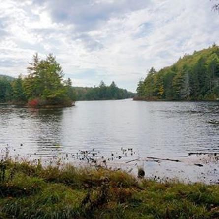 Blue Blaze Trails Fall Hike Series: Nipmuck Trail
