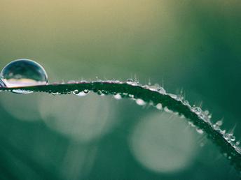 Tipos de água encontradas na natureza