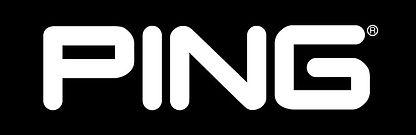 Ping-logo-2.jpg