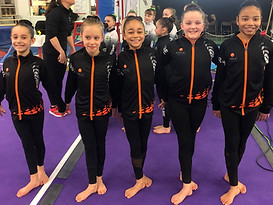 Women's Artisitc Gymnastics KWGC team