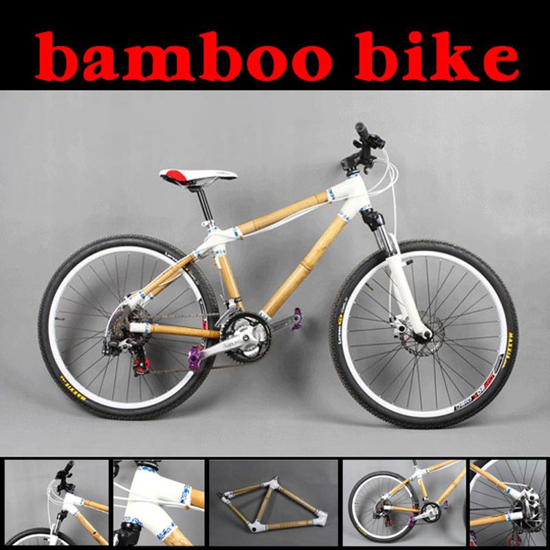 daily bike