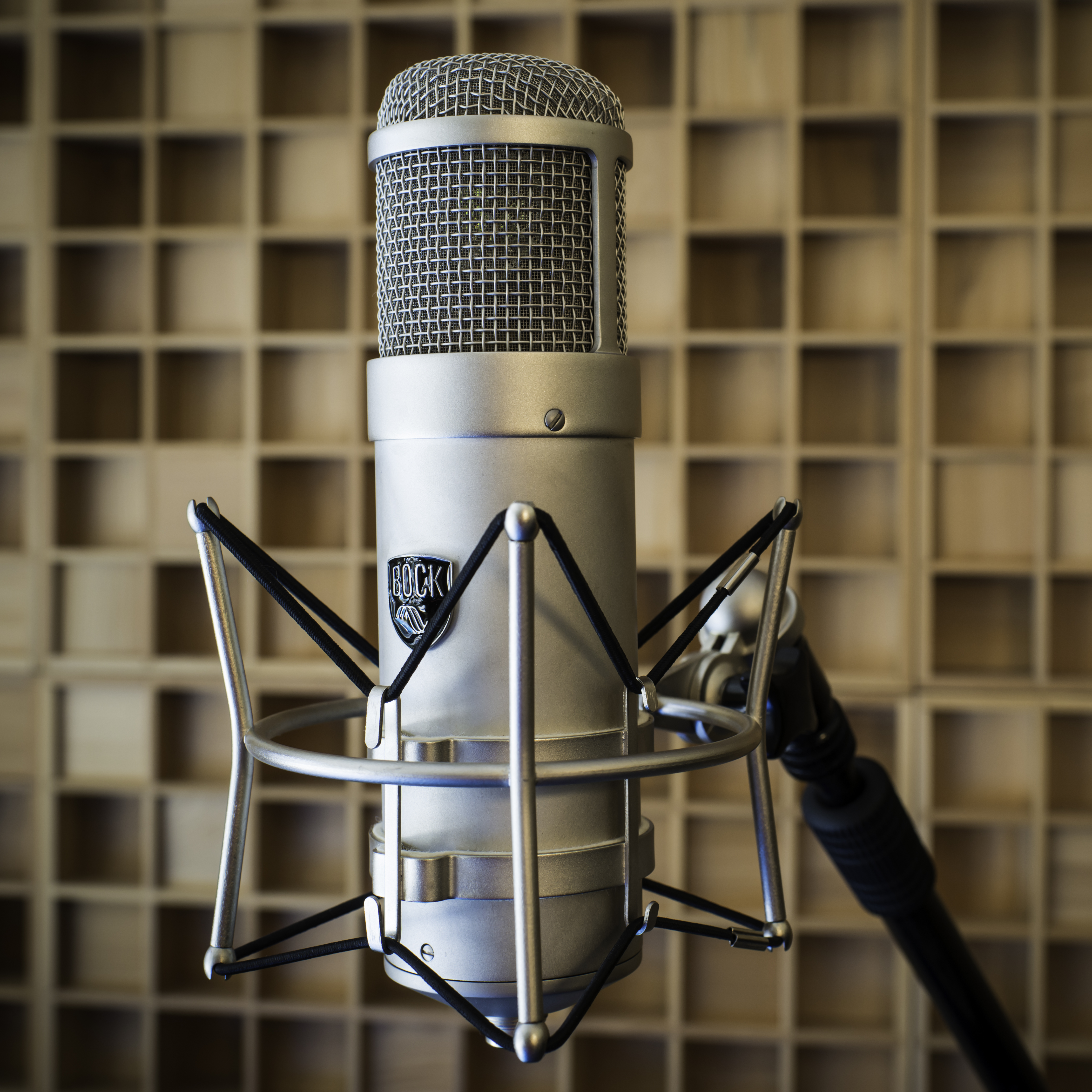 Electric Air Studios - Photos - Mics Bock 407-1