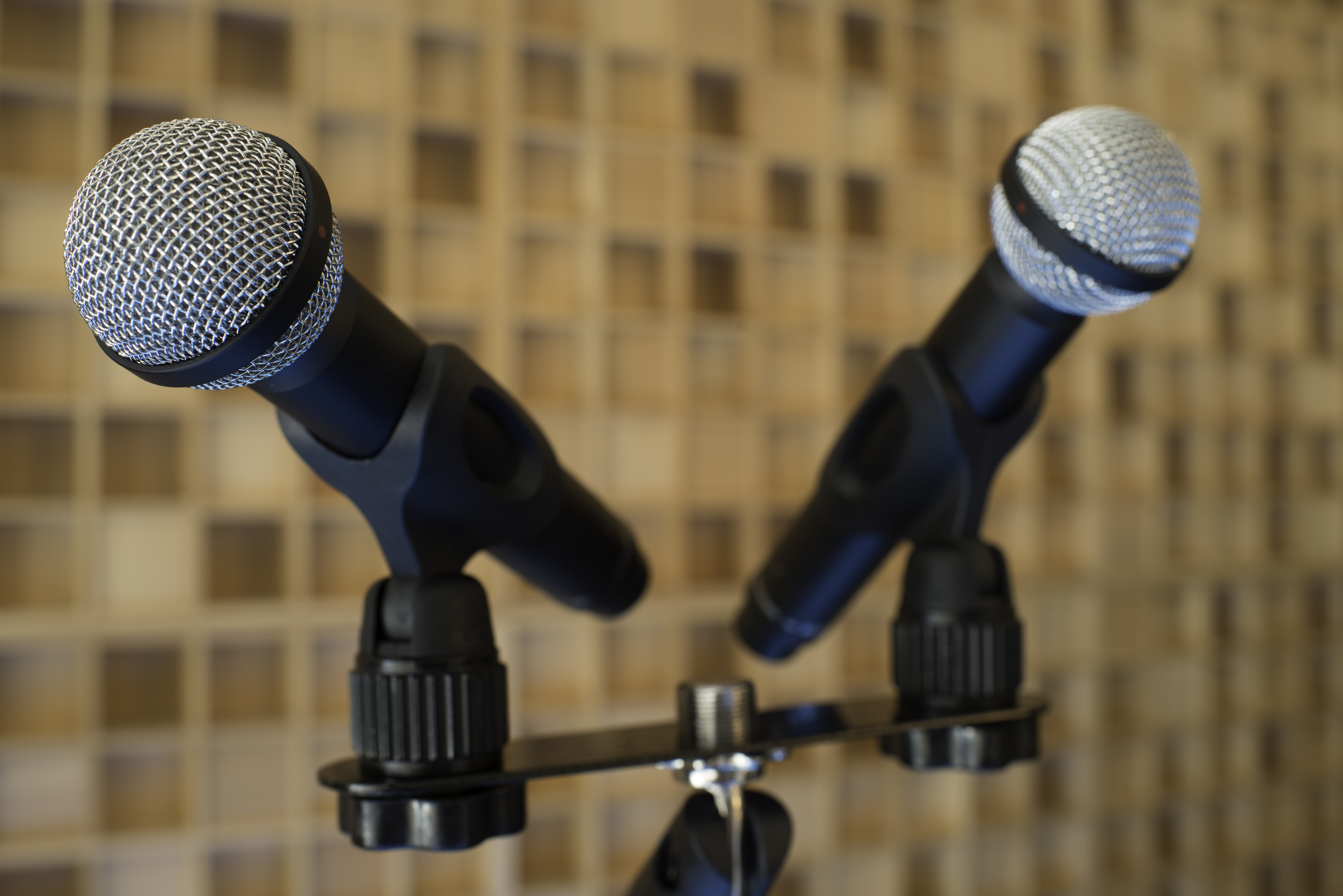 Electric Air Studios - Photos - Mics-3