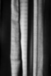 LookingForLight-12.jpg