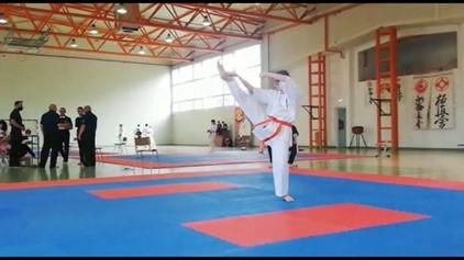 Gojdişti cu care ne mândrim - O gimnastă karatistă - Elisa Randiș