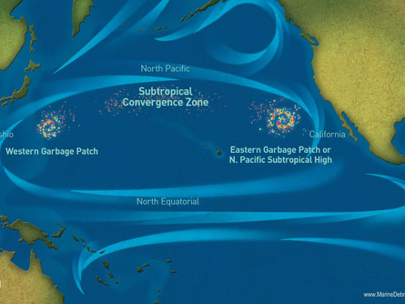 The Great Pacific Garbage Patch: A Growing Problem for Humanity