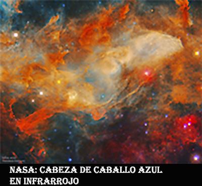 IC4592-CABEZA DE CABALLO AZUL-INFRARROJO