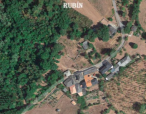 Rubin-Google-2-WEB.jpg