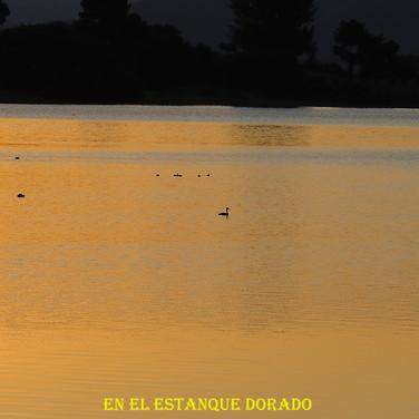Amanecer desde Embalse Jarosa-14-WEB.jpg