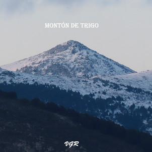 Monton de Trigo-2-WEB.jpg