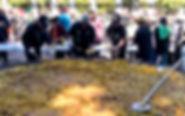 Paella-4-WEB.jpg