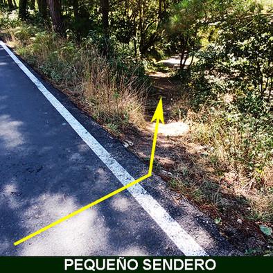 7-Sendero hacia la pista-web.jpg