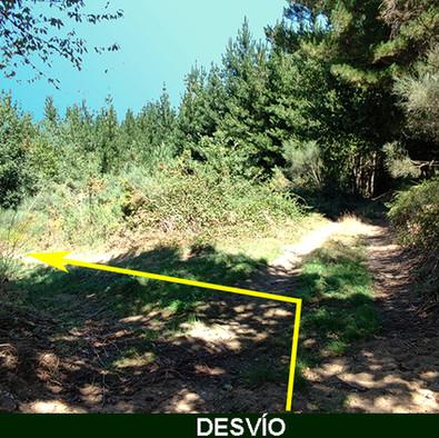 4-Bifurcacion Camino-WEB.jpg