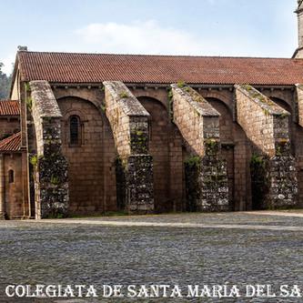 Colegiata_de_Santa_maría_del_Sa-WEBr.jp