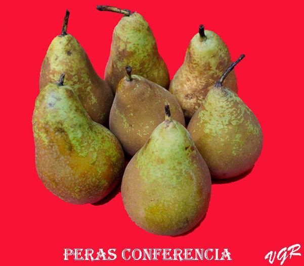 Peras Cponferencia-2-WEB.jpg