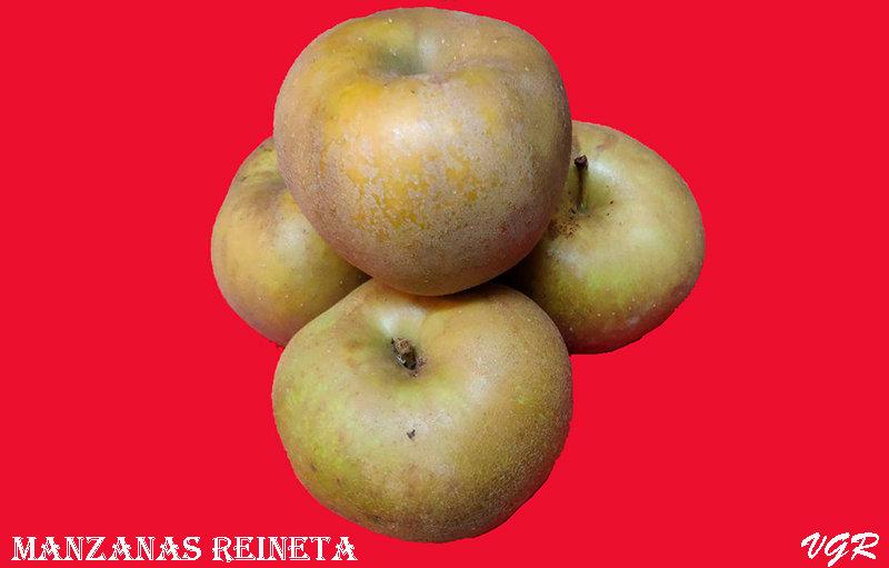 Manzanas Reineta-WEB.jpg