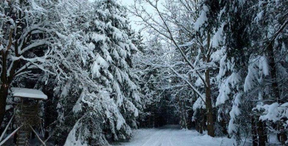 Nieve en el cebreiro-1-WEB.jpg