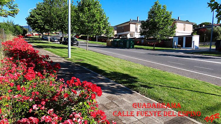 Calle Fuente del Espino-WEB.jpg