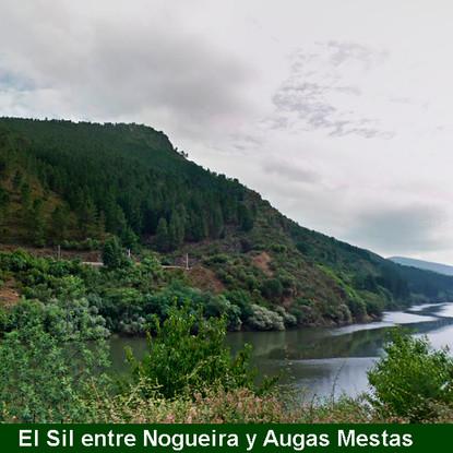 11-El Sil entre Nogueira y Augas mestas-WEB.jpg