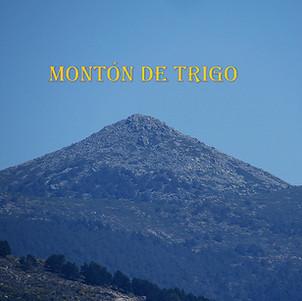 Monton de Trigo-1-WEB.jpg