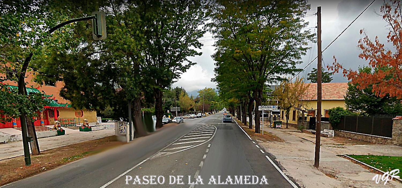 Paseo de la Alameda-WEB.jpg